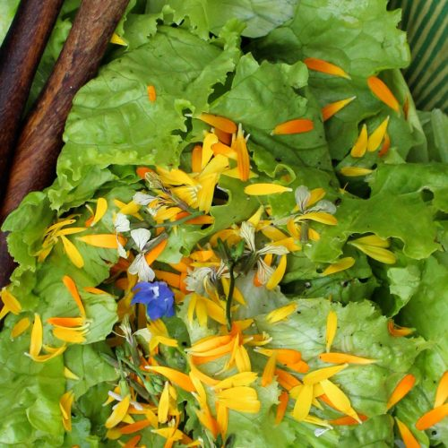 1452517773_BnB_chateau_salad-flowers
